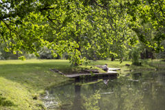 Romantic view of the pond in the summer. Romantic view of the green beautiful pond in the summer Stock Images