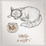 Romantic vintage birthday card template with calligraphy, cat and goldfish sketch. Great for holiday design Stock Photo