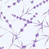 Romantic vintage pattern Stock Image