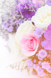 Romantic vintage rose background Royalty Free Stock Photo