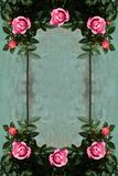 Romantic vintage roses background Royalty Free Stock Photos