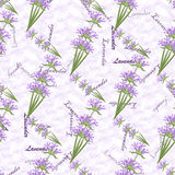 Romantic vintage seamless pattern with lavender flowers Royalty Free Stock Image