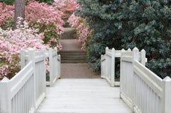 Romantic Walk Callaway Gardens Azalea Overlook GA stock photos