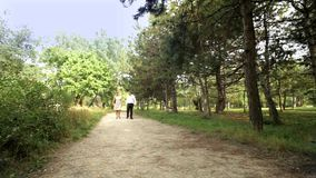 Romantic Walk In The Park stock footage