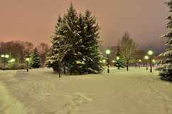 Romantic walk in a winter park at night. Royalty Free Stock Photo
