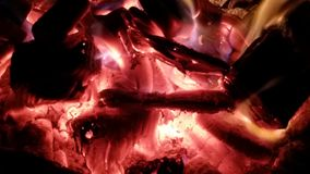 Romantic warmth. Camp fire and wine Stock Photos