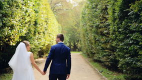 Romantic Wedding Concept Bride Holding Hand. Walking shot in slow motion stock footage