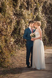 Romantic wedding couple looking at each other Royalty Free Stock Images