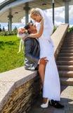 Romantic wedding couple Stock Images
