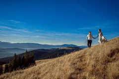 Romantic wedding couple walking in the mountains. Royalty Free Stock Image