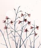 Romantic Wild Flowers Composition Stock Photo