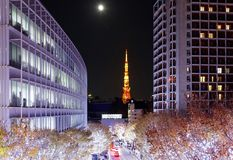 Romantic Winter Illumination Display in Christmas season in Keyakizaka. Viewed from Roppongi Hills, with illuminated buildings & trees by the street and the stock image