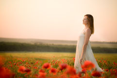 Romantic woman Royalty Free Stock Photography