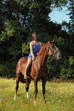 Romantic woman bareback riding in evening Stock Photos