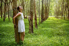 Romantic woman in the forest Royalty Free Stock Photos