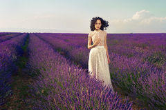 Free Romantic Woman In Fairy Lavender Fields Stock Image - 26044591