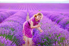 Romantic woman in lavender fields, having vacations in Provence, stock image