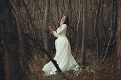 Romantic woman posing in autumn woods Royalty Free Stock Photography