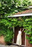 Woman under white bougainvillea. Romantic woman standing near old doors under a bush of blossoming bougainvillea Stock Photography