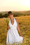 Romantic woman in sunset corn field wear dress Royalty Free Stock Image