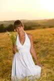 Romantic woman in sunset corn field wear dress. Romantic brunette woman in sunset corn field wear white dress, holding bouquet of flowers Royalty Free Stock Image