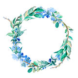 Romantic wreath of blue flowers painted in watercolor. Delicate wreath of blue flowers painted in watercolor Stock Photos