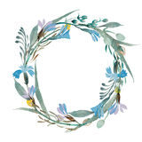 Romantic wreath of blue flowers painted in watercolor. Rustic wreath of blue flowers painted in watercolor Stock Images
