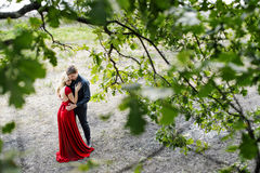 Romantic young couple embracing under a tree. Rendezvous in evening dress (top view&#x29 Stock Photos