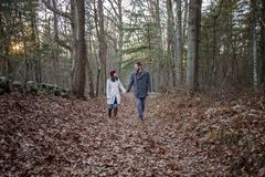 Romantic young couple holding hands walking in the woods. A romantic young couple holding hands and walking in the woods on a cold fall day with sun setting stock image