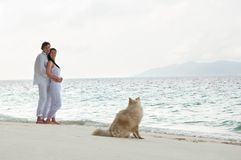 Romantic young couple on the sea shore with dog Stock Photo