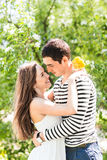 Romantic young couple standing under  blossom tree Royalty Free Stock Photography