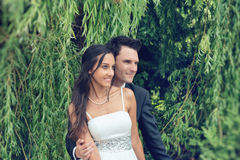 Romantic young couple under a weeping willow Royalty Free Stock Photo