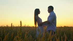 Romantic young happy couple silhouette in golden wheat field at sunset. Woman and man hugging and kissing against stock video