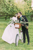 Romantic young just married couple kissing in sunny park with decorated bicycle. Warm sun flares Royalty Free Stock Photo