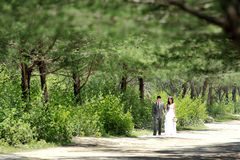 Romantic young newlywed couple walking by at forest. Portrait of romantic young newlywed couple walking by at forest with copy space Royalty Free Stock Photos
