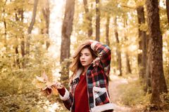 Romantic Young Woman on Natural Background Outdoors. Autumn tree leaves sky background. Enjoying good weather. Outdoor. Atmospheric fashion photo of young royalty free stock photos
