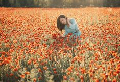 Romantic young woman walking in flower field. royalty free stock photos