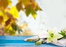 Romanticism Stock Images