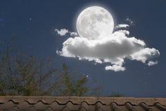 Romantico alla notte Fotografia Stock Libera da Diritti