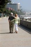 romantiker går Royaltyfri Fotografi