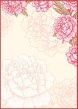 Romantiker inramar vektor för detaljerad teckning för bakgrund blom- Kort Royaltyfri Bild