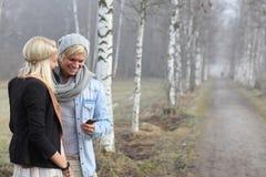 Romantiker kopplar ihop höst Royaltyfri Fotografi