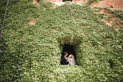 Romantiker saga, lyckligt nygift personpar som kramar och kysser i en parkera, träd i bakgrund royaltyfri foto