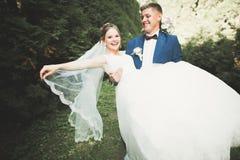 Romantiker saga, lyckligt nygift personpar som kramar och kysser i en parkera, träd i bakgrund arkivbild
