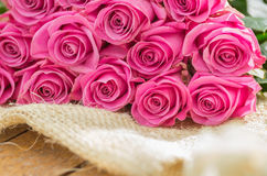 Romantisch boeket van Ecuatoriaanse roze rozen Stock Afbeelding