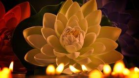 Romantisch Kaarslicht en Bloemen stock video