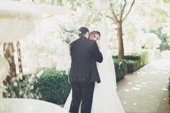 Romantisch, Märchen, glückliche Jungvermähltenpaare, die in einem Park, Bäume im Hintergrund umarmen und küssen stockbilder