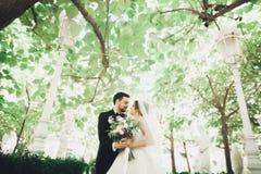 Romantisch, Märchen, glückliche Jungvermähltenpaare, die in einem Park, Bäume im Hintergrund umarmen und küssen lizenzfreies stockfoto