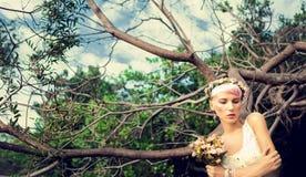 romantisch meisje in het hout Stock Afbeeldingen