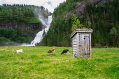 Romantisch Noorwegen royalty-vrije stock foto's